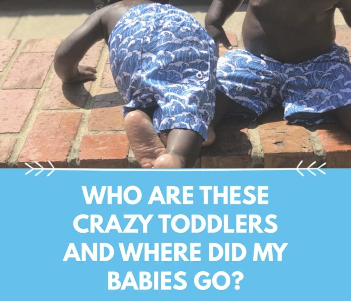 Who Are These Crazy Toddlers and Where Did My Babies Go?